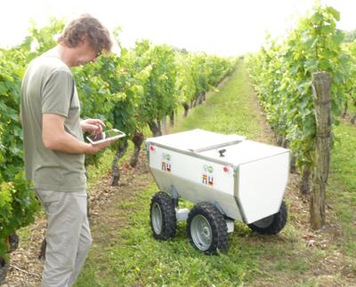Viticulture de précision : demain, un robot pour prédire rendements, potentiel œnologique des raisins...
