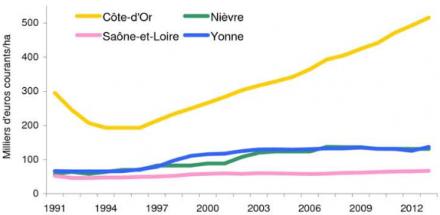 Côte d'Or : le prix des vignes n'a de cesse d'augmenter