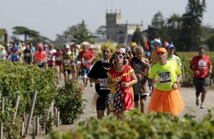 Vins de Bordeaux : le millésime 2014, un marathon toujours en course