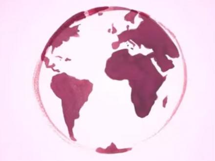Vendanges 2014 : la France redevient le premier producteur mondial de vins