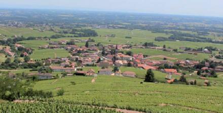 Beaujolais : acquisition du domaine de Rochegrès par Albert Bichot