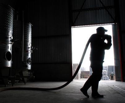 Montée de gamme : les vins chiliens se repositionnent lentement, mais sûrement