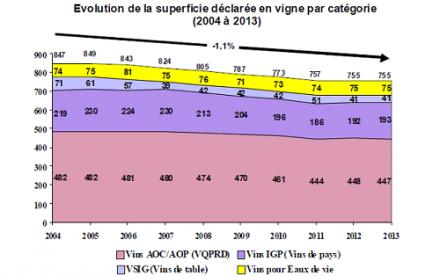 Déchiffré, décodé : la baisse de surface du vignoble français