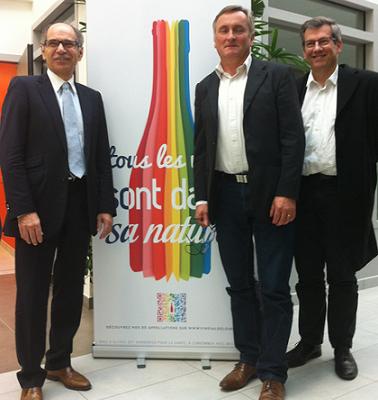 Vins du val de Loire : Interloire veut rassembler AOP et IGP