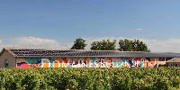 Médoc : les graffitis s'embourgeoisent sur les chais des domaines Rollan de By