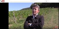 Jean-Luc Mélenchon, nouveau porte-drapeau de la «paysannerie viticole»?